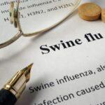 swine flu Copyright: designer491 / 123RF Stock Photo
