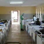 disease x, ebola